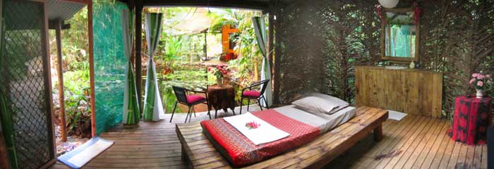 Thai massage in the Daintree at Cape Tribulation