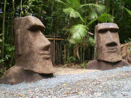 maoi guarding accommodation at cape tribulation